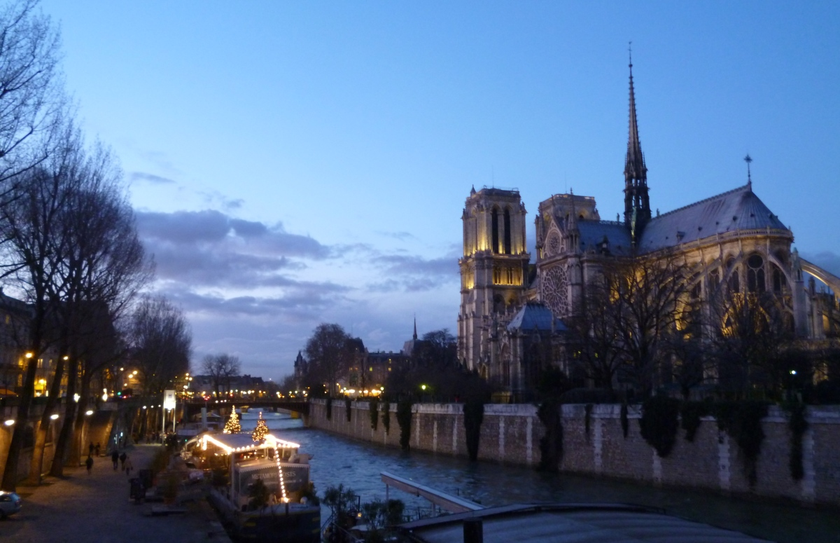Picture Perfect: Notre Dame and the Seine